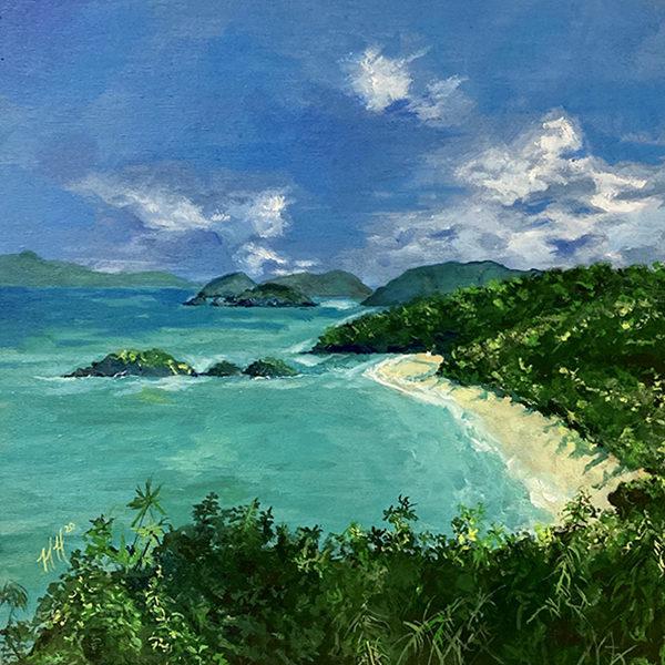 Trunk Bay by Heather Hodgeman